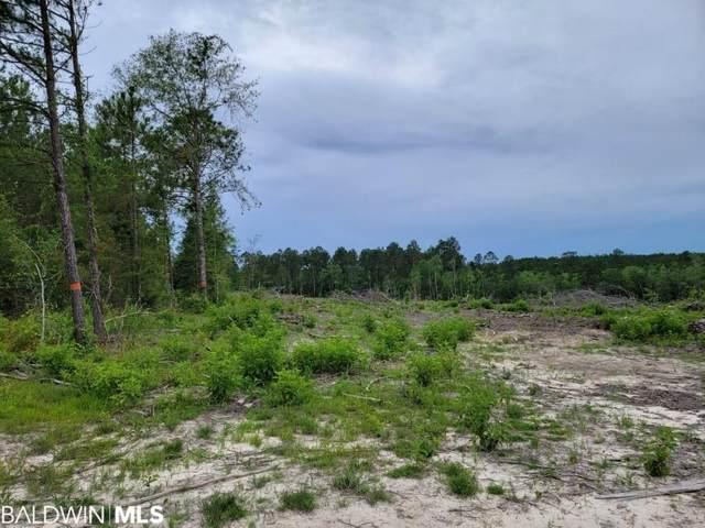 000 Scranage Rd, Little River, AL 36550 (MLS #315948) :: Ashurst & Niemeyer Real Estate