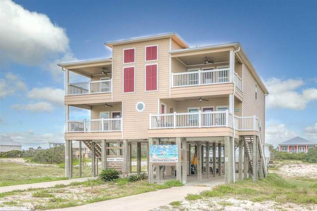 6697 Beach Shore Drive, Gulf Shores, AL 36542 (MLS #316369) :: EXIT Realty Gulf Shores