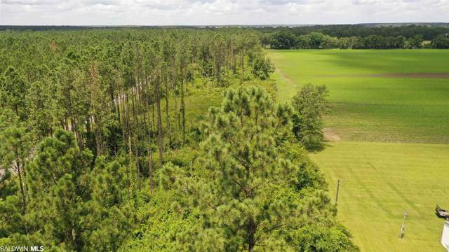6000 Blk Highway 97, Walnut Hill, FL 32568 (MLS #316371) :: RE/MAX Signature Properties