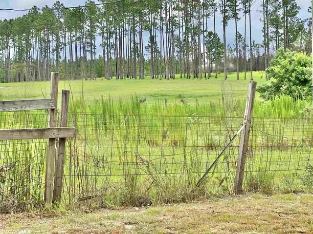0 Burbon Lane, Robertsdale, AL 36567 (MLS #317717) :: EXIT Realty Gulf Shores