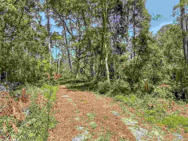 18766 Sims Drive, Gulf Shores, AL 36542 (MLS #317727) :: Ashurst & Niemeyer Real Estate