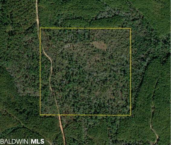 0 Private Rd, Mcintosh, AL 36553 (MLS #317767) :: Sold Sisters - Alabama Gulf Coast Properties