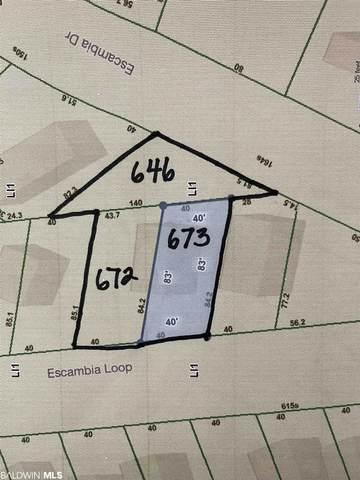672 Escambia Loop, Lillian, AL 36549 (MLS #318152) :: Coldwell Banker Coastal Realty
