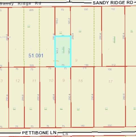 17252 Sandy Ridge Road, Foley, AL 36535 (MLS #318303) :: Mobile Bay Realty