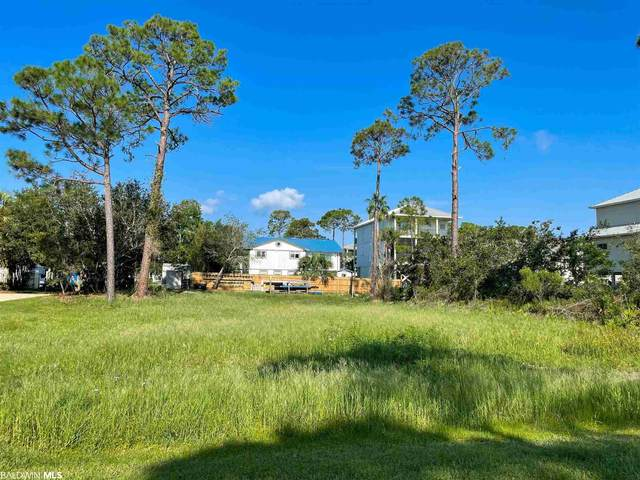 Hideaway, Orange Beach, AL 36561 (MLS #318575) :: Gulf Coast Experts Real Estate Team