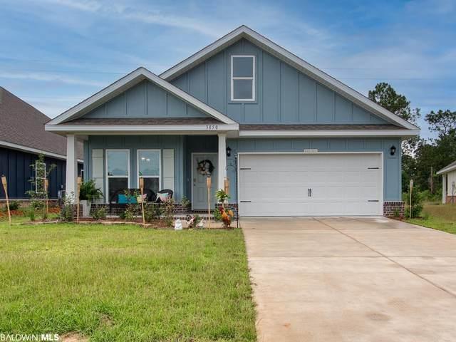 3850 Borman Loop, Gulf Shores, AL 36542 (MLS #318603) :: Alabama Coastal Living