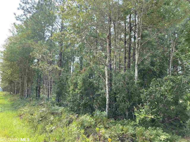 0 Booneville Road, Atmore, AL 36502 (MLS #319096) :: Dodson Real Estate Group