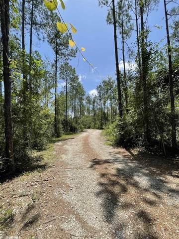 18676 Greek Cemetery Road, Robertsdale, AL 36567 (MLS #319119) :: Alabama Coastal Living