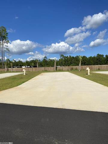 19558 County Road 8, Gulf Shores, AL 36542 (MLS #319193) :: Dodson Real Estate Group