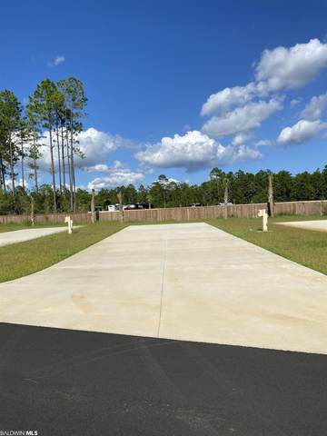 19558 County Road 8, Gulf Shores, AL 36542 (MLS #319194) :: Dodson Real Estate Group