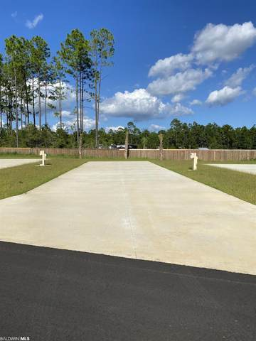 19558 County Road 8, Gulf Shores, AL 36542 (MLS #319195) :: Dodson Real Estate Group