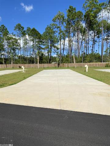 19558 County Road 8, Gulf Shores, AL 36542 (MLS #319201) :: Dodson Real Estate Group
