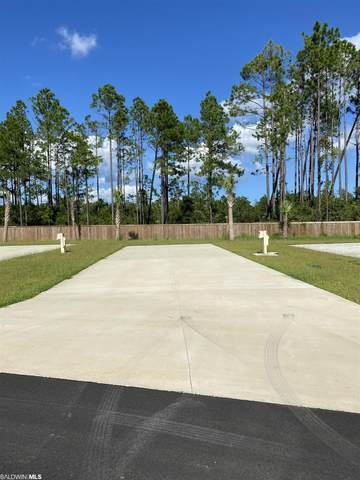 19558 County Road 8, Gulf Shores, AL 36542 (MLS #319203) :: Dodson Real Estate Group