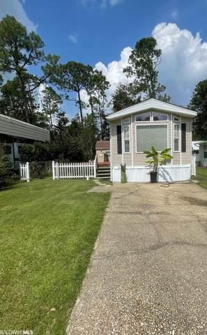 193 Defuniak Loop, Lillian, AL 36549 (MLS #319866) :: HergGroup Gulf Coast