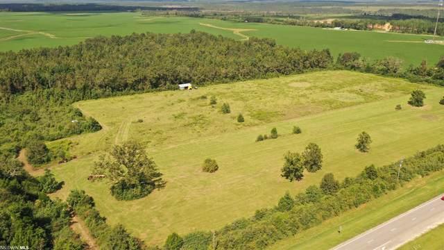 8000 N Highway 29, Molino, FL 32577 (MLS #320465) :: Mobile Bay Realty