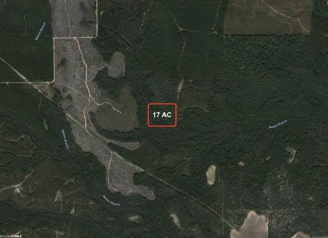 27572 River Road, Robertsdale, AL 36567 (MLS #320486) :: Gulf Coast Experts Real Estate Team