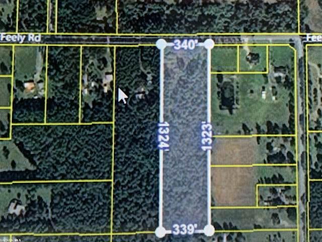 26348 Feely Rd, Elberta, AL 36530 (MLS #321003) :: RE/MAX Signature Properties