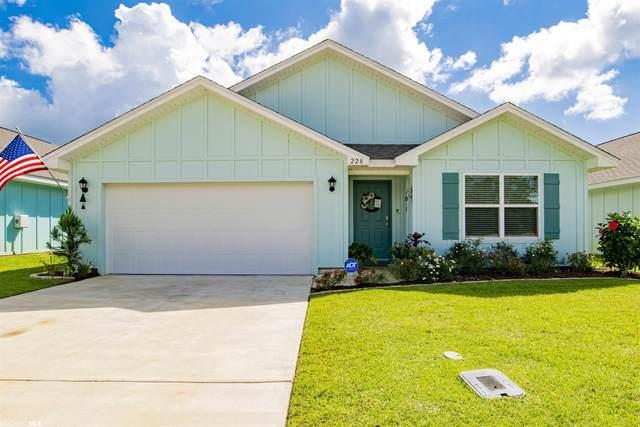 228 Burnston Way, Foley, AL 36535 (MLS #321255) :: Dodson Real Estate Group