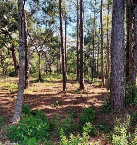 3 Heron Cove Lane, Gulf Shores, AL 36542 (MLS #321753) :: Dodson Real Estate Group