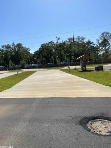 19558 County Road 8, Gulf Shores, AL 36542 (MLS #321766) :: RE/MAX Signature Properties