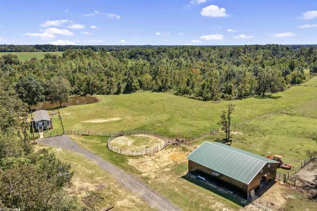 23062 S County Road 62, Robertsdale, AL 36567 (MLS #321949) :: World Impact Real Estate