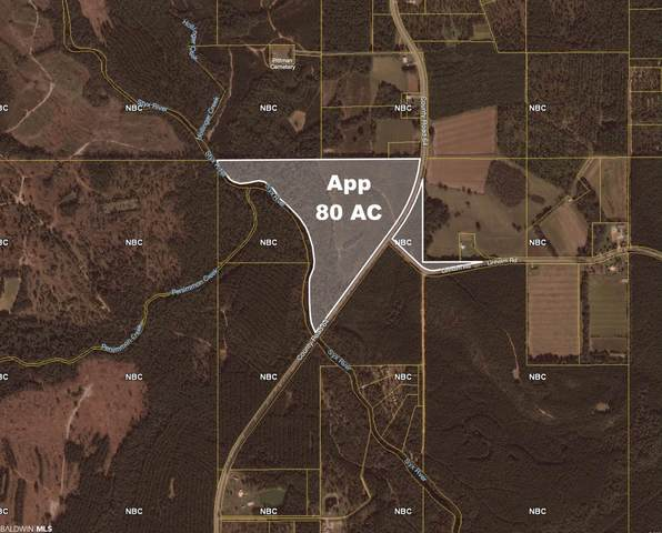 County Road 64, Robertsdale, AL 36567 (MLS #321959) :: World Impact Real Estate