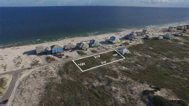 93 Ponce De Leon Court, Gulf Shores, AL 36542 (MLS #253714) :: Elite Real Estate Solutions
