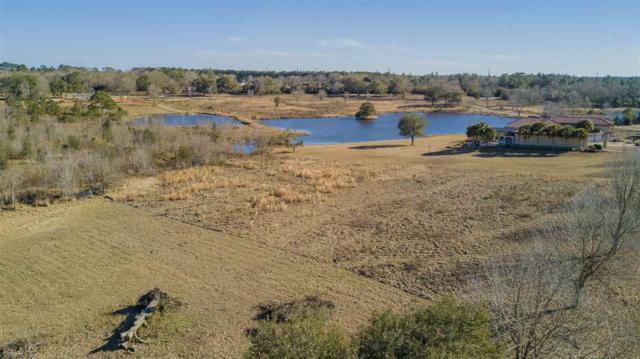 0 Balsam Creek Drive, Elberta, AL 36530 (MLS #254378) :: Gulf Coast Experts Real Estate Team