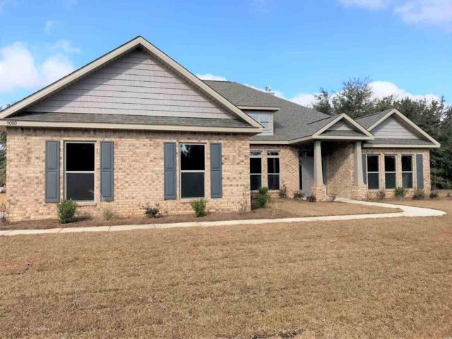 9000 Lakeview Drive, Foley, AL 36535 (MLS #256059) :: Gulf Coast Experts Real Estate Team