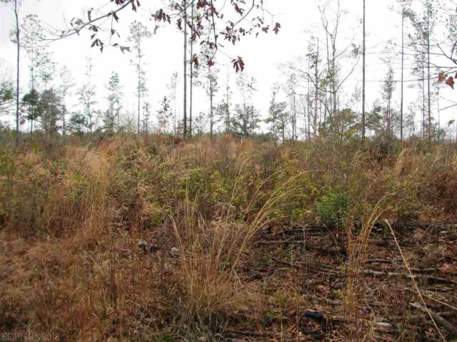 Lot 5 County Road 64, Robertsdale, AL 36567 (MLS #261363) :: Elite Real Estate Solutions