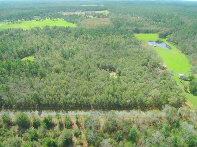 0 Old Weekly Road, Bay Minette, AL 36562 (MLS #261481) :: Gulf Coast Experts Real Estate Team