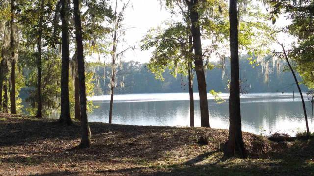 1 White Oak Creek Drive, Minter, AL 36761 (MLS #261935) :: Elite Real Estate Solutions