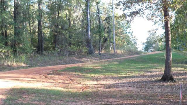 0 White Oak Creek Drive, Minter, AL 36761 (MLS #261937) :: Elite Real Estate Solutions