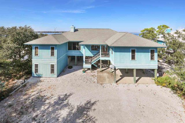 30453 Ono Blvd, Orange Beach, AL 36561 (MLS #262413) :: The Premiere Team