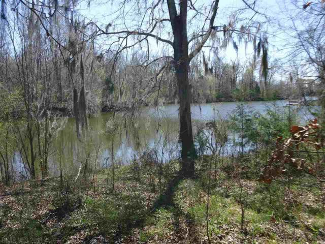 0 River Oaks Landing, Orrville, AL 36767 (MLS #265937) :: Ashurst & Niemeyer Real Estate