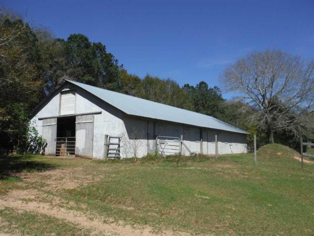 14310 Bishop Trace, Lillian, AL 36549 (MLS #266664) :: Gulf Coast Experts Real Estate Team