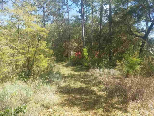 0 County Road 99, Lillian, AL 36549 (MLS #266746) :: The Kim and Brian Team at RE/MAX Paradise