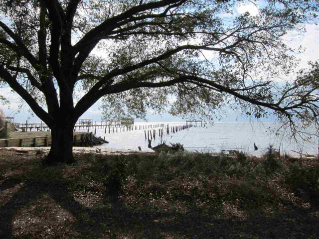 9337 S Bay Road, Foley, AL 36535 (MLS #268848) :: Gulf Coast Experts Real Estate Team