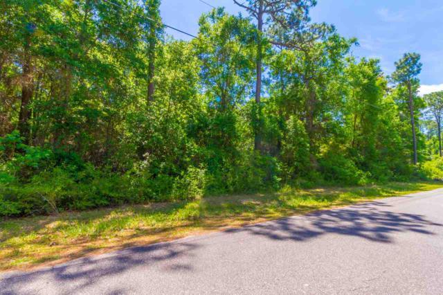 0 Redfish Point Road, Lillian, AL 36549 (MLS #269370) :: Elite Real Estate Solutions