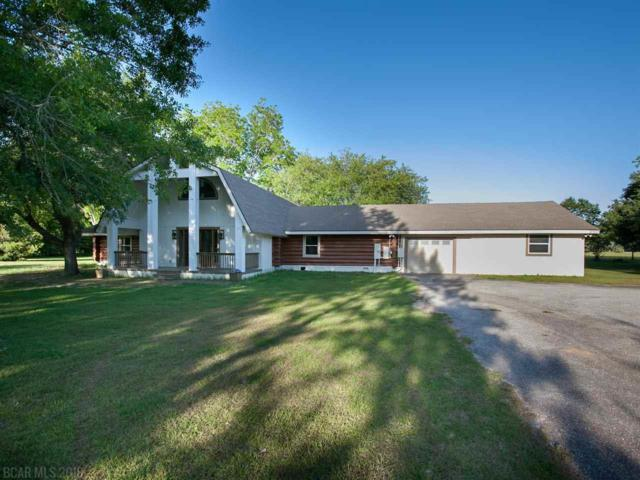 26201 Norman Woerner Lane, Elberta, AL 36530 (MLS #269426) :: The Kim and Brian Team at RE/MAX Paradise