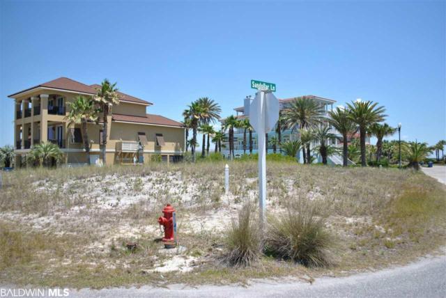 0 Sea Horse Circle, Gulf Shores, AL 36542 (MLS #269558) :: Coldwell Banker Coastal Realty