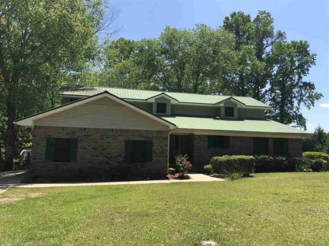 202 Tippins Eddy Road, Brewton, AL 36426 (MLS #270039) :: The Kim and Brian Team at RE/MAX Paradise