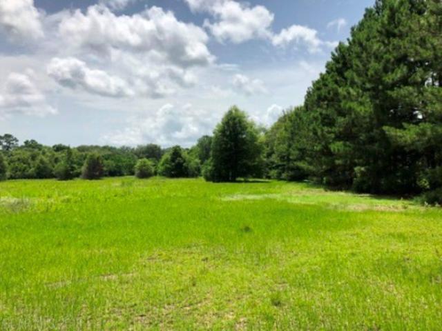 0 Fox Lane, Lillian, AL 36549 (MLS #270811) :: Gulf Coast Experts Real Estate Team