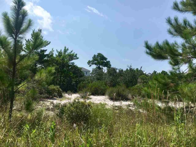 6702 Lakeshore Drive, Gulf Shores, AL 36542 (MLS #270833) :: Ashurst & Niemeyer Real Estate
