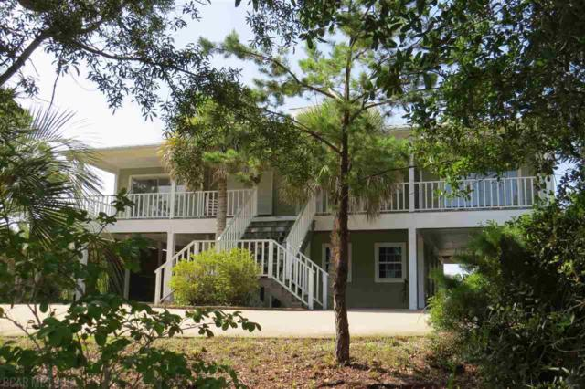 30220 Ono Blvd, Orange Beach, AL 36561 (MLS #271289) :: The Premiere Team