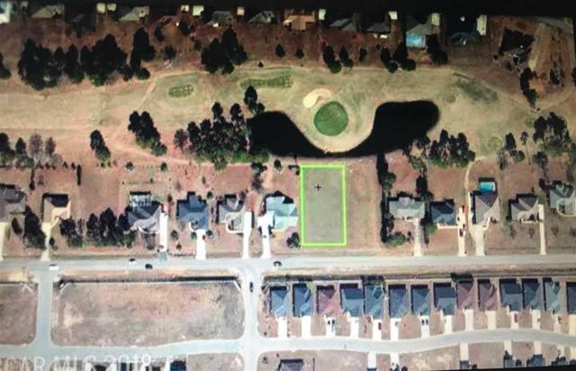 0 County Road 12, Foley, AL 36535 (MLS #272044) :: Elite Real Estate Solutions