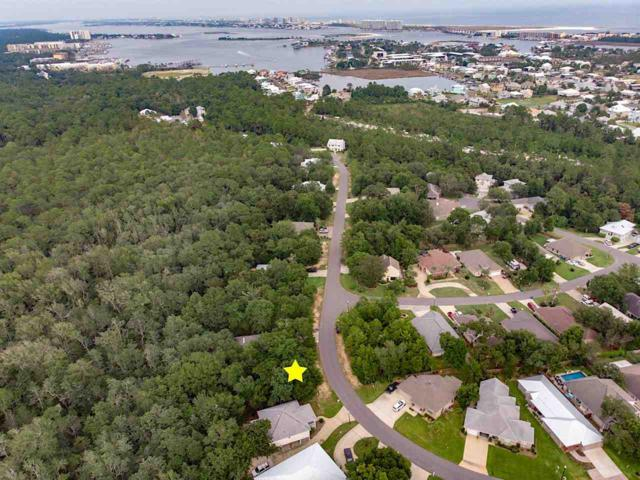 0 Terry Cove Drive, Orange Beach, AL 36561 (MLS #272322) :: Elite Real Estate Solutions