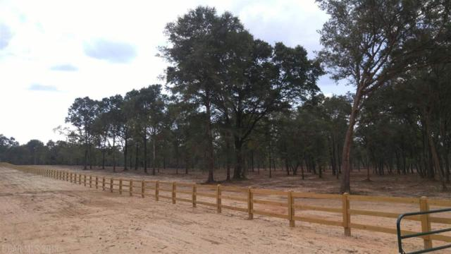 0 Bromley Road, Stapleton, AL 36578 (MLS #272623) :: Sold Sisters - Alabama Gulf Coast Properties