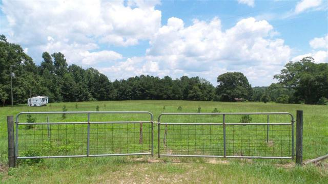 8306 County Road 7, Repton, AL 36475 (MLS #272632) :: Gulf Coast Experts Real Estate Team