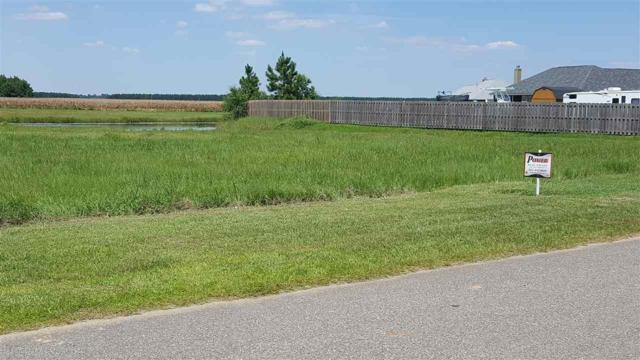 0 Bridgewater Drive, Theodore, AL 36582 (MLS #272735) :: Elite Real Estate Solutions